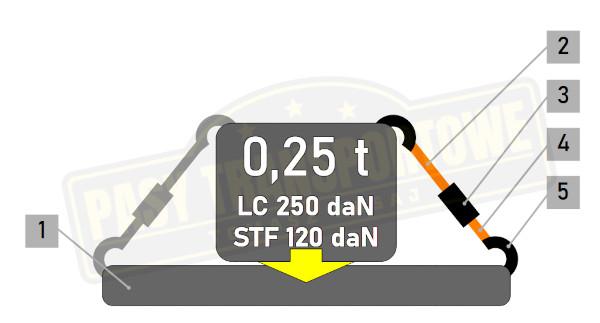 Pas ROLLO samozwijający 0,25 tony z napinaczem - 25 mm